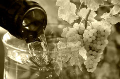 Wine and grapes backdrop Royalty Free Stock Image