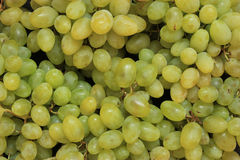 Wine grapes background Stock Photos