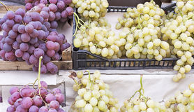 Wine grapes background Stock Photography