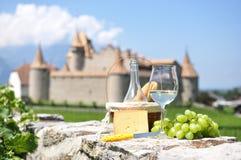 Wine and grapes. Chateau de Aigle, Switzerland Stock Image