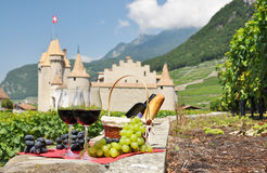 Wine and grapes. Royalty Free Stock Photos