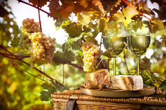 Wine, grapes and cheese Royalty Free Stock Images