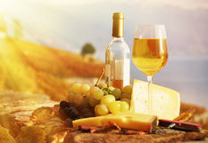 Wine, grapes and cheese. Against vineyards in Lavaux region, Switzerland Royalty Free Stock Photography