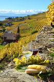 Wine, grapes and cheese. Lavaux, Switzerland Stock Photos