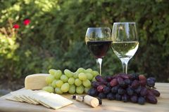 Wine, Grapes, Crackers and Cheese. Red and White grapes and wine, with crackers and cheese for a picnic in the rose garden Stock Images