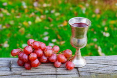 wine grapes glass of Jewish holidays Royalty Free Stock Images