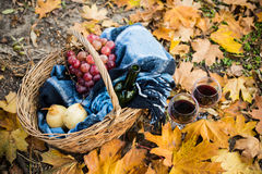 Wine, grapes and glasses. Basket with a blanket, wine, grapes and glasses on yellow autumn leaves. A cozy autumn picnic in the park, a warm autumn day Stock Image