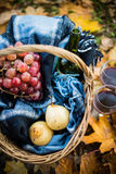 Wine, grapes and glasses. Basket with a blanket, wine, grapes and glasses on yellow autumn leaves. A cozy autumn picnic in the park, a warm autumn day Stock Photo