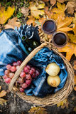 Wine, grapes and glasses. Basket with a blanket, wine, grapes and glasses on yellow autumn leaves. A cozy autumn picnic in the park, a warm autumn day Royalty Free Stock Photos