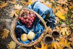 Wine, grapes and glasses. Basket with a blanket, wine, grapes and glasses on yellow autumn leaves. A cozy autumn picnic in the park, a warm autumn day Royalty Free Stock Images