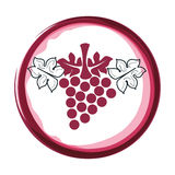 Wine grapes isolated icon Stock Images
