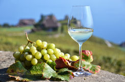 Wine and grapes. Royalty Free Stock Images