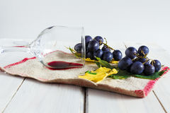 Wine, grapes and leafs Royalty Free Stock Photo