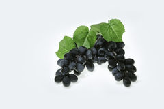 Wine grapes with leaves Stock Image