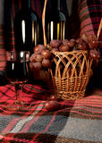 The wine and grapes on the plaid background Royalty Free Stock Photography