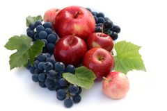 Wine grapes and red apples. Fruit composition on white background. Top view stock images