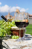 Wine and grapes. Among vineyards Royalty Free Stock Images