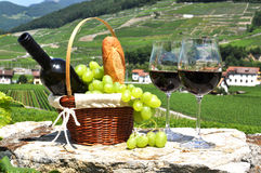 Wine and grapes. Among vineyards Royalty Free Stock Photography