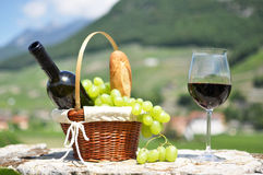 Wine and grapes. Among vineyards Stock Images