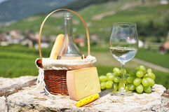 Wine and grapes. Among vineyards Stock Photos