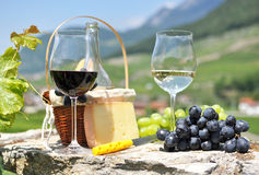 Wine and grapes. Among vineyards Stock Photography