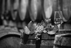 Wine Grapes in a Wine Cellar in black and white Royalty Free Stock Photos