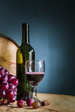 Wine grapes in winery. Royalty Free Stock Image