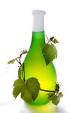Wine and grapevine. Grapevine wrapped around green tinted bottle of wine, isolated on white background Stock Images