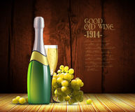Wine and grapevine Royalty Free Stock Photos