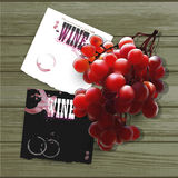 Wine and grapevine Royalty Free Stock Photography