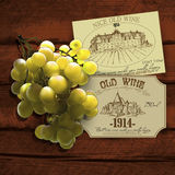 Wine and grapevine Stock Photos