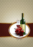 Wine and grapevine Stock Photography