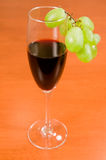 Wine and green vine. Royalty Free Stock Photo