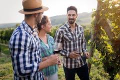 Wine grower and people in vineyard Stock Image