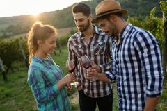 Wine grower and people in vineyard Royalty Free Stock Photo