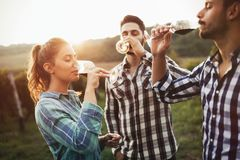Wine grower and people in vineyard Stock Images