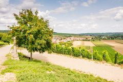 Wine-growing district in Franconia Royalty Free Stock Images