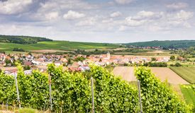 Wine-growing district in Franconia Royalty Free Stock Photography
