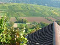View from the vineyard on autumnal colored fields with hut in the foreground. Wine growing in southern Germany, idyllic wine region, agricultural-used Areas stock photos