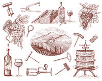 Wine harvest products, press, grapes, vineyards corkscrews glasses bottles in vintage style, engraved hand drawn. Sketch Royalty Free Illustration