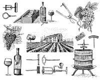 Wine harvest products, press, grapes, vineyards corkscrews glasses bottles  Stock Photos