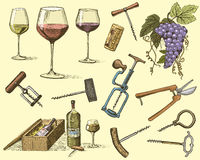 Wine harvest products, press, grapes, vineyards corkscrews glasses bottles in vintage style, engraved hand drawn. Sketch Stock Illustration