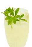 Wine with herbs Royalty Free Stock Photography