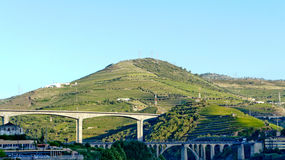 Wine hills. Douro valley, where Port wine comes from Stock Photos