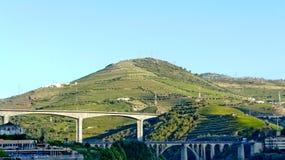 Wine hills Stock Photos
