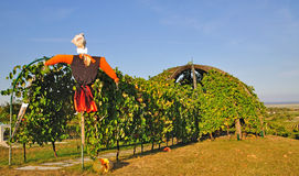 Wine hut,Oggau,Lake Neusiedl,Austria Stock Photos