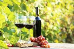 Wine i exponeringsglas arkivfoto
