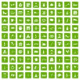 100 wine icons set grunge green Stock Images