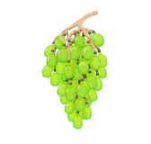 Wine industry concept. Bunch of grapes in the form of wine bottles and cork stem Stock Images