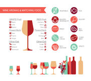 Wine info. Graphics with food pairing, bottle and glass type, wine types and colours royalty free illustration